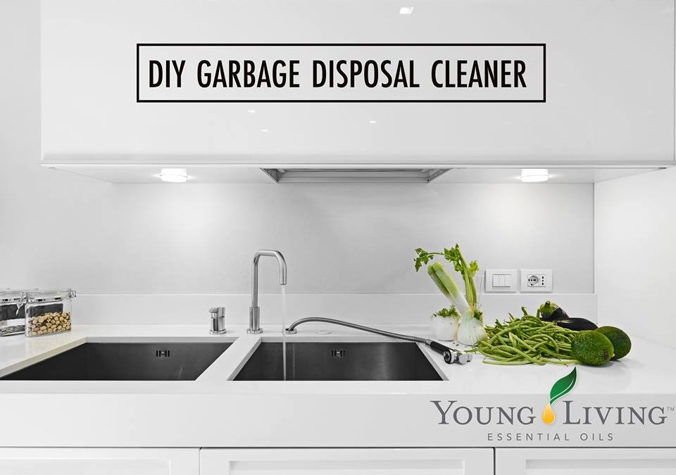 #DIYFriday: Garbage Disposal Cleaner