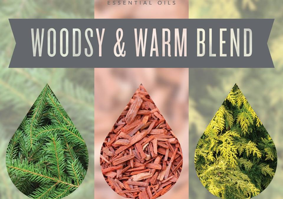 Woodsy and Warm Diffuser Recipe